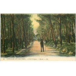 carte postale ancienne 83 BOUMI. Forêt d'Aigues