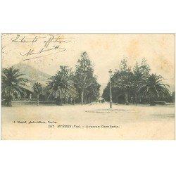 carte postale ancienne 83 HYERES. Avenue Gambetta 1903