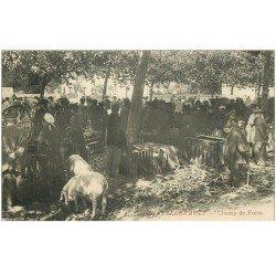 carte postale ancienne 86 CHATELLERAULT. Champ de Foire Marché aux Cochons et Porcs 1912