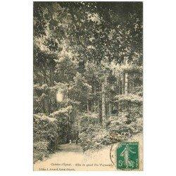 carte postale ancienne 88 EPINAL. Enfants Allée du Grand Pin Weymouth 1911