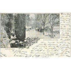 carte postale ancienne 88 LA FEUILLEE DOROTHEE. Le Val d'Ajol 1903 Cascade du Géhard 1900