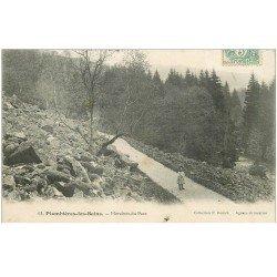 carte postale ancienne 88 PLOMBIERES LES BAINS. Fillette Moraines du Parc 1907