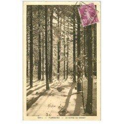 carte postale ancienne 88 PLOMBIERES LES BAINS. La Futaie du Chanot. Petite coupure sous le timbre...