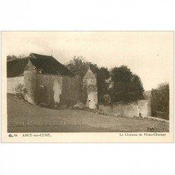 carte postale ancienne 89 ARCY SUR CURE. Le Château de Vieux Champs