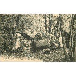 78 VALLEE DE CHEVREUSE. Les Roches de Vaux de Cernay. Dolmens et Menhirs et Pierres