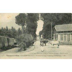 91 EPINAY-SUR-ORGE. Paysan Eleveur et ses Vaches Route de Paris à Morsang-sur-Orge et Bois de Villemoisson