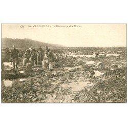 carte postale ancienne 14 VILLERVILLE. Ramassage des Moules