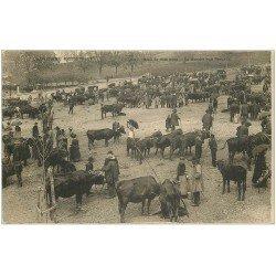 carte postale ancienne 15 AURILLAC. Le Marché aux Bestiaux. Maquignons et Vaches vers 1900