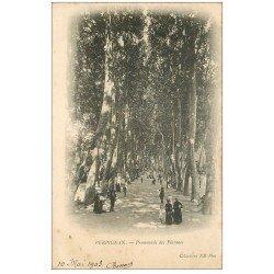 carte postale ancienne 66 PERPIGNAN. Promenade des Platanes 1903