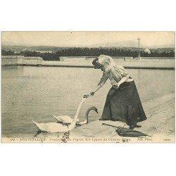 carte postale ancienne 34 MONTPELLIER. Cygnes du Château d'Eau Promenade du Peyrou 1915
