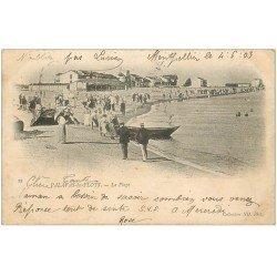 carte postale ancienne 34 PALAVAS-LES-FLOTS. Plage 1903
