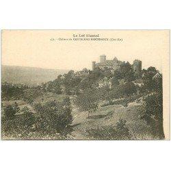 carte postale ancienne 46 CASTELNAU-BRETENOUX. Château 452