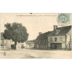 carte postale ancienne 18 BRINON-SUR-SAULDRE. La Place du Marronnier 1906. Café Hôtel l'Ecu et Dauphin