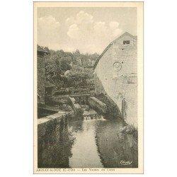 carte postale ancienne 21 AIGNAY-LE-DUC. Les Vannes du Creux
