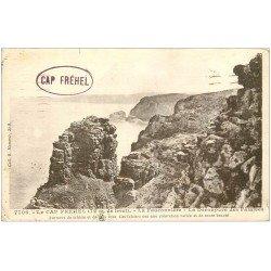 carte postale ancienne 22 CAP FREHEL. Fauconnière et Falaises 1934
