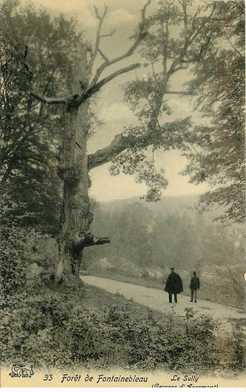 carte postale ancienne 77 FONTAINEBLEAU. Le Sully gorges d'Apremont 1907. Carte émaillographie
