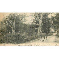 carte postale ancienne 77 BARBIZON. Cerf et Biches Route Marie-Thérèse