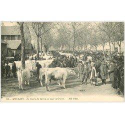 carte postale ancienne 03 MOULINS. Jour de Foire Cours de Bercy. Boeufs et Maquignons