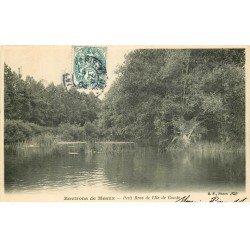 carte postale ancienne 77 ILE DE CONDE. Le Petit Bras 1904