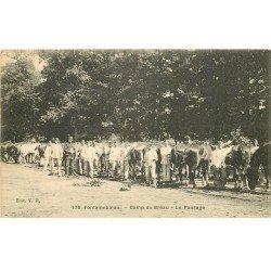 carte postale ancienne 77 FONTAINEBLEAU. Camp du Bréau. Le Pansage