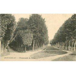 carte postale ancienne 77 MONTEREAU. Promenade de Noue vers 1905