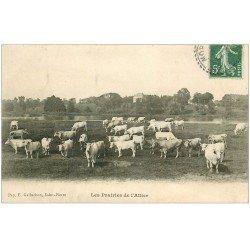 carte postale ancienne 03 Vaches dans les Prairies de l'Allier (carte gondolée)...