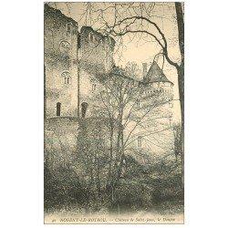 carte postale ancienne 28 NOGENT-LE-ROTROU. Château de Saint-Jean Donjon