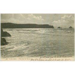 carte postale ancienne 29 CAMARET-SUR-MER. Les Tas de Pois