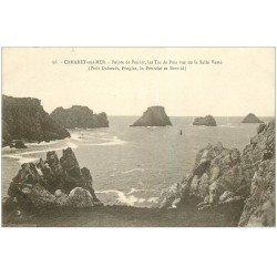carte postale ancienne 29 CAMARET-SUR-MER. Pointe de Penhir et Tas de Pois