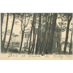 carte postale ancienne 29 NEVEZILIO-EN-PLOARE. Maison dans le Bois