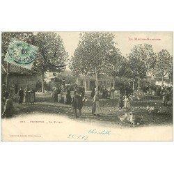 carte postale ancienne 31 FRONTON. Le Forail 1907