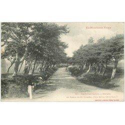 carte postale ancienne 31 SAINT-FERREOL. Route des Sapins entrée du Bassin 1918