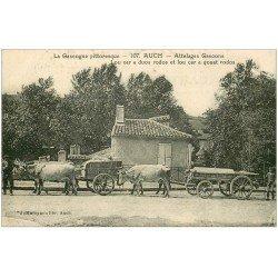 carte postale ancienne 32 AUCH. Attelages de Boeufs Gascons