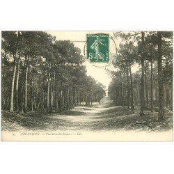 carte postale ancienne 33 ARCACHON. Les Dunes 1911
