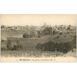 carte postale ancienne 33 SAINT-EMILION. Les Vignobles BR 21