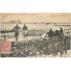 carte postale ancienne 35 CANCALE. Cancalaises Parcs à Huîtres 1906