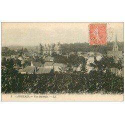 carte postale ancienne 37 LANGEAIS. Vue 1928