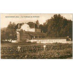 carte postale ancienne 01 REVONNAS. Château de Grillerin. Ramasseurs de légumes