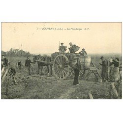 carte postale ancienne 37 VOUVRAY. Les Vendanges 1932