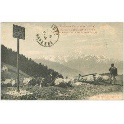 carte postale ancienne 65 ASPIN. Bergers sur le Plateau 1925