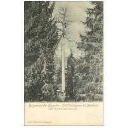 carte postale ancienne 65 BAGNERES-DE-BIGORRE. Le Chataîgner de Médous animation à sa base vers 1900