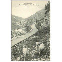 carte postale ancienne 65 BAREGE. Route du Tourmalet avec Paysanne et Vaches