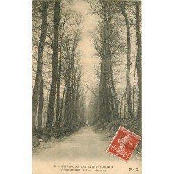 carte postale ancienne 76 GOMMERVILLE. L'Avenue