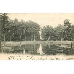 carte postale ancienne 76 ELBEUF. La Mare Asse vers 1900