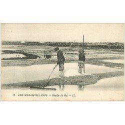 carte postale ancienne 44 AU MARAIS SALANTS. Récolte du Sel