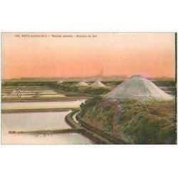 carte postale ancienne 44 BOURG DE BATZ. Marais Salants. Mulons de Sel
