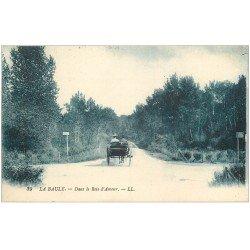 carte postale ancienne 44 LA BAULE. Bois d'Amour 1922