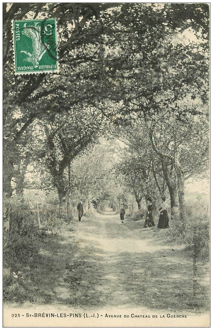 carte postale ancienne 44 SAINT-BREVIN-LES-PINS. Avenue Château de la Guerche animée