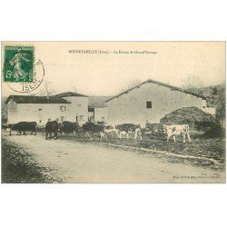 carte postale ancienne 38 BONNEFAMILLE. Vaches Ferme de Grand'Grange 1911