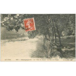 carte postale ancienne 39 CHAMPAGNOLE. Bois de Gazon et Forges 1919